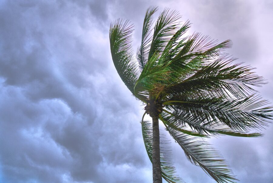 Tropical Storm Isaias to hit Florida