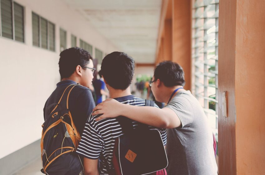 Psychosocial Support for St Vincent Teachers, Pupils