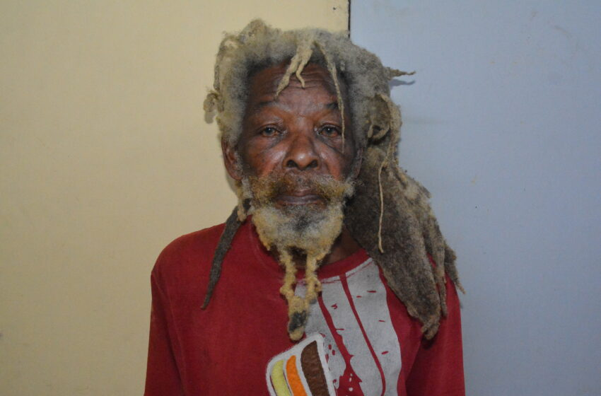 Tobago Farmer, 73, In Court for Iguana, Armadillo, Turtle Carcasses