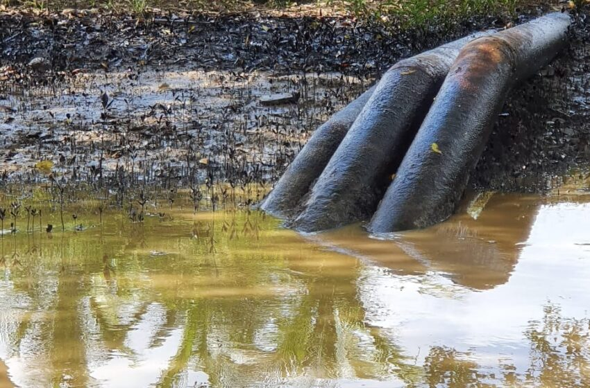 EMA Continues to Monitor Woodland Oil Spill