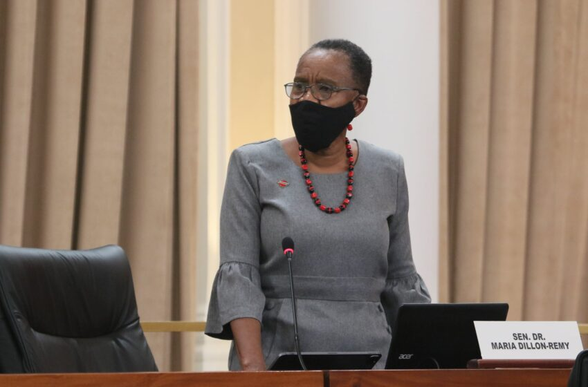 Independent Senator Dillon-Remy Helps Government Pass Procurement Law