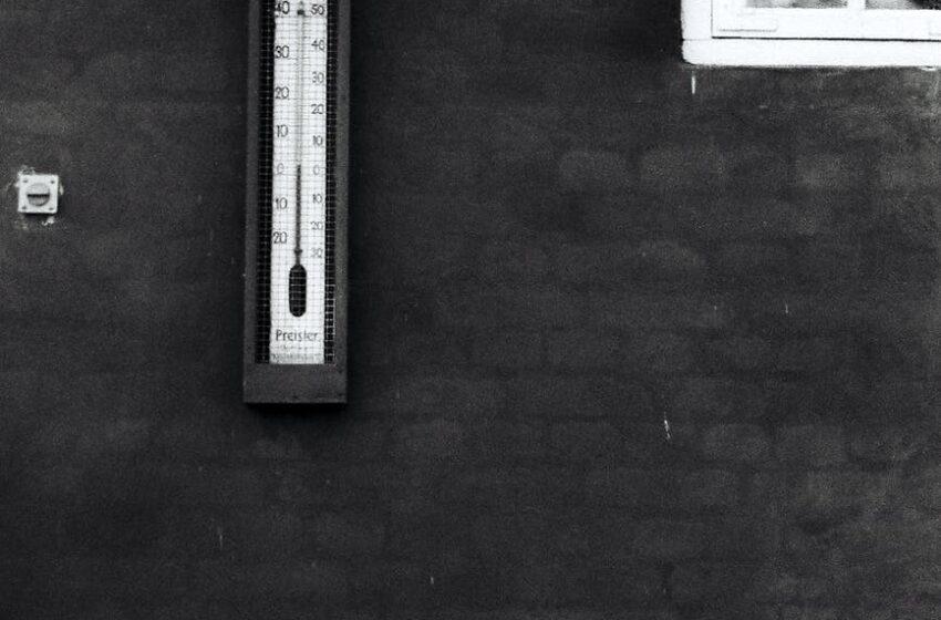 T&T Records 19º Celsius