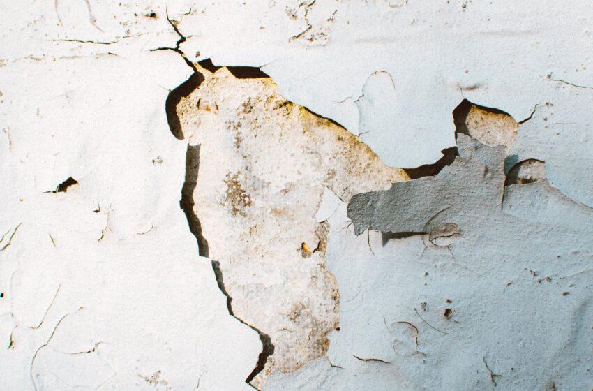 Earthquake Hits Guyana, Brazil